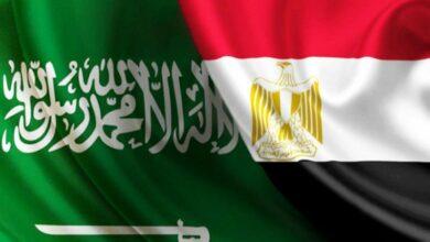 علما مصر والسعودية
